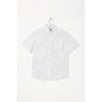 Купить Рубашка Белая короткий рукав от Бренда Bogi